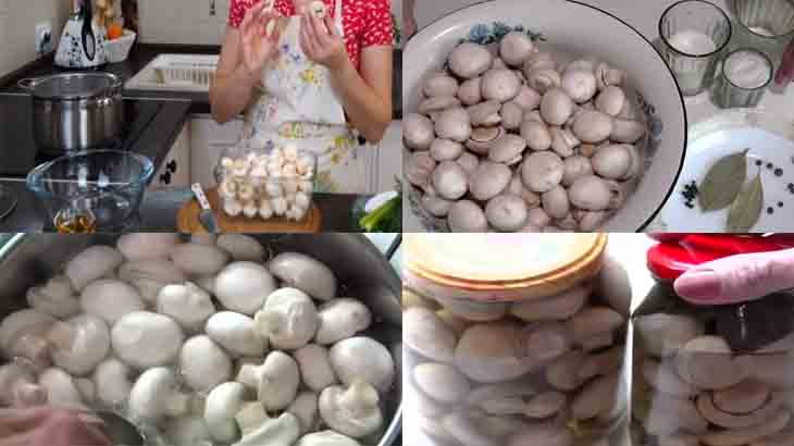 Приготовление грибов по-венесуэльски